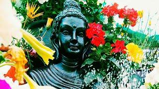 jardin zen ll créer zen jardin sur terrasse ll MON PETIT JARDIN