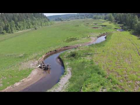 Ohop Creek restoration in the Nisqually Watershed