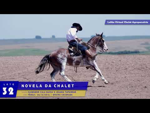 LOTE 32 - Novela da Chalet