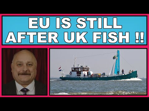 EU Is Still After UK Fish Post Brexit! (4k)