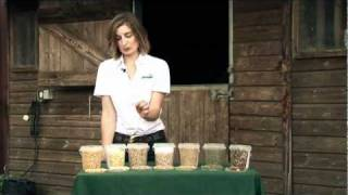 What's in horse feed? - Raw Materials