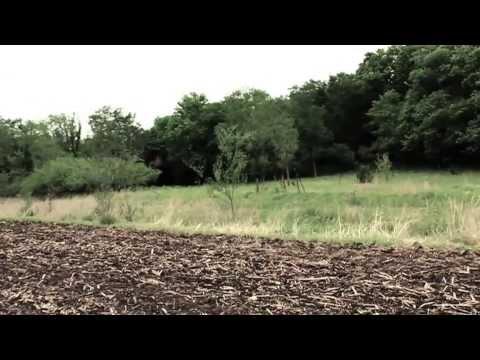 Escape- The Devil Wears Prada (official music video)