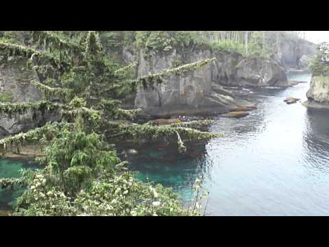 Cape Flattery in Indian country near the Washington state and Canadian border