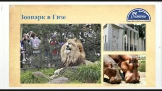 Экскурсионные туры в Египет(Экскурсионные туры в Египет., 2016-04-08T05:51:06.000Z)