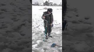 Рыбалка приколы