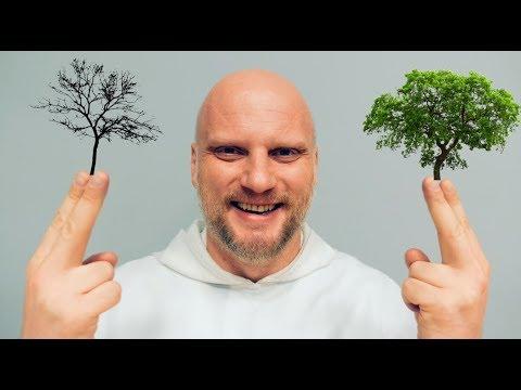 [CNN#114] Dwa drzewa