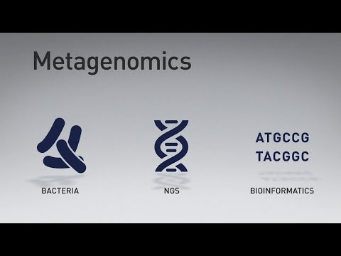 The Evolution Of Metagenomic Sequencing