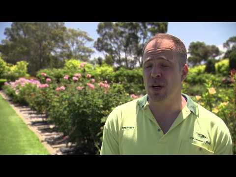 Inside Centennial Park Cemetery Crematorium Adelaide Australia