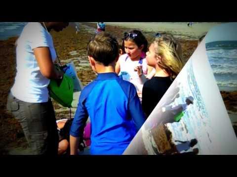 education usa news university of texas austin school