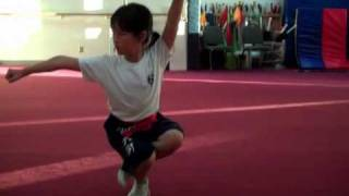 Wu Shu , Kung Fu Lessons for Kids & Mixed Martial Arts Fremont, CA