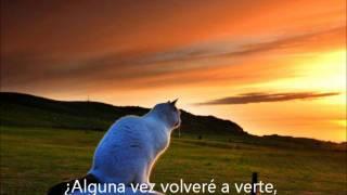 DIONYSUS - FOREVER MORE TRADUCIDO