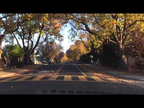Drive around mid town Palo Alto