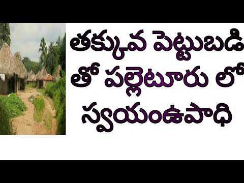 Self employment ideas and self employment tips in telugu