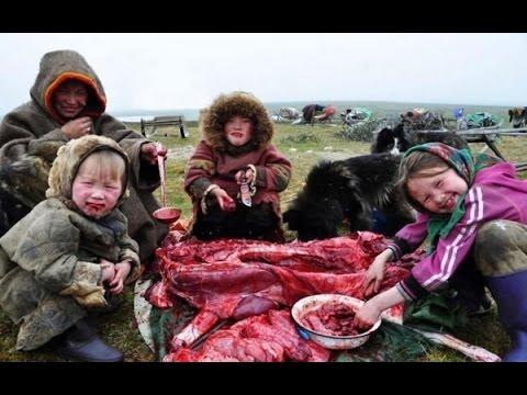 Cuộc sống của bộ tộc ăn thịt sống ở Bắc Cực
