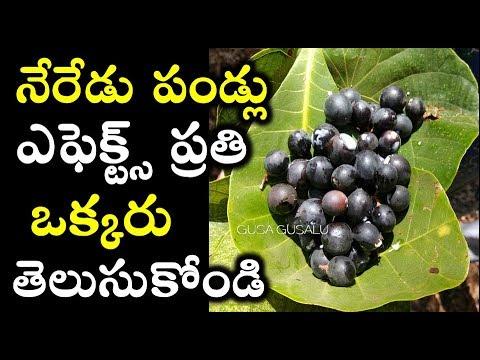 Neredu Pandu valla Upayogalu | Jamun Fruit Health benefits I Black Plum effects | Natural telugutips