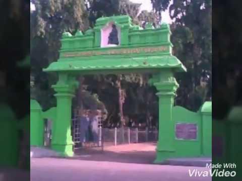 Pachaiyappa'$ college Avadi route 40
