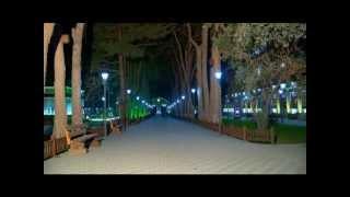 AAAF Park