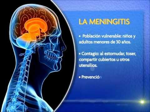 Cuidados para la meningitis youtube for Cuidados de la vinca