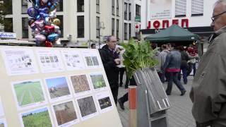 Knollenfest Euskirchen HD
