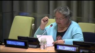5th Interactive Dialogue on Harmony with Nature: Robin Wall Kimmerer