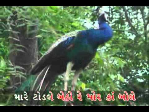 Gujarati folk song_Mare Todale Betho Mor re....