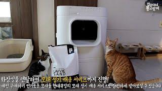 고양이 자동화장실 라비봇2를 렌탈할 수 있다구요?!