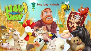 Hay Day - The Hay Day Animals