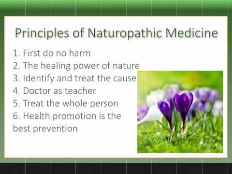 Naturopathic Medicine Intro from one of best Naturopathic Doctors in Toronto