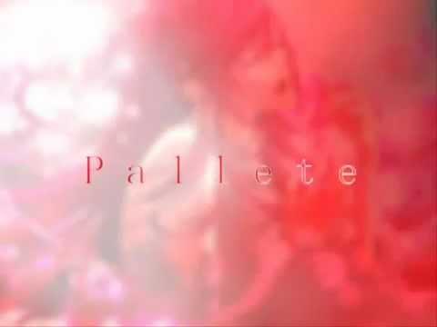 Клип 花たん - Palette