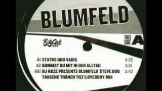 DJ Koze pres. Blumfeld vs. Steve Bug - Tausend Tränen tief / Loverboy remix.wmv