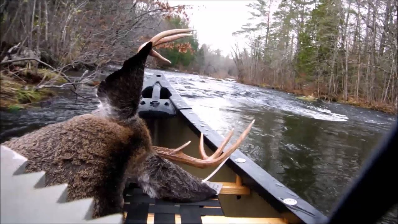 hunt canoe duck youtube blinds watch blind