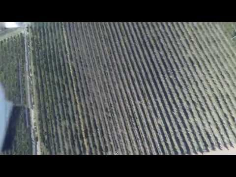 Seismic Fault Rupture Seen in Vineyard (by a drone)