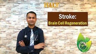STROKE - How to Regenerate Brain Cells After Stroke