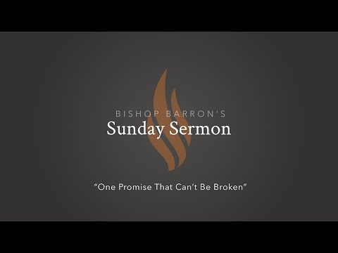 One Promise That Can't Be Broken — Bishop Barron's Sunday Sermon