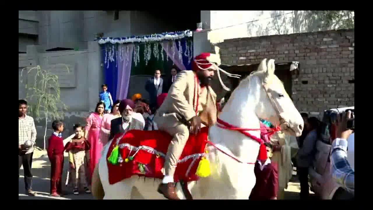 Download Punjabi Marriage Funny Video