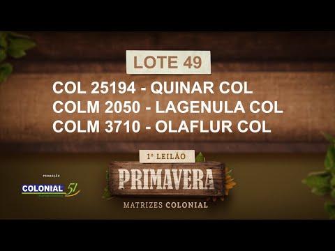 LOTE 49  COL 25194, COLM 2050,3710