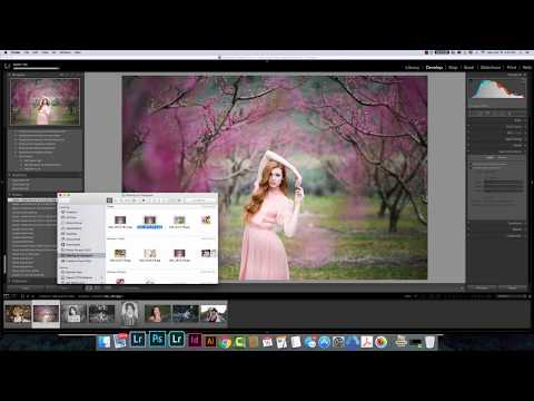 Creating a Graphic Watermark in Lightroom - Video Tutorial