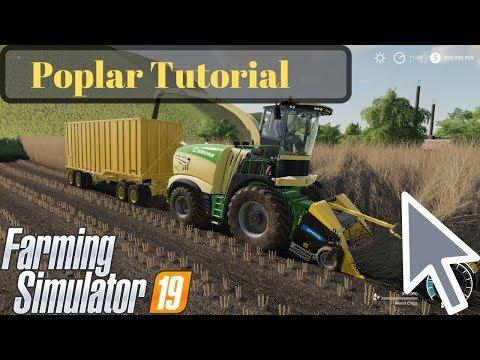 Poplar Tutorial Farming Simulator 19