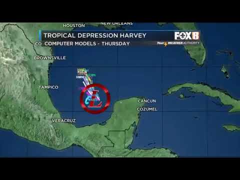 Tropical system brewing in Gulf of Mexico: Forecast from WVUE Fox 8 News meteorologist Bruce Katz