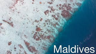 Maldives - Paradise | Travel Video | GoPro Hero 8 | Mavic Air | 4K