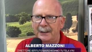 Alberto Mazzoni, Direttore Istituto Marchigiano Tutela Vini (IMT)