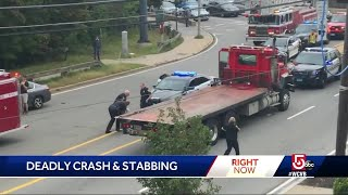 Man stabs driver after his mom fatally hit crossing road