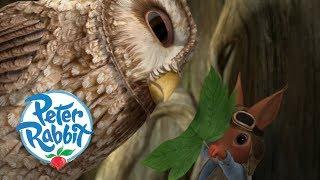 Peter Rabbit - Saving Squirrel Nutkin   Cartoons for Kids