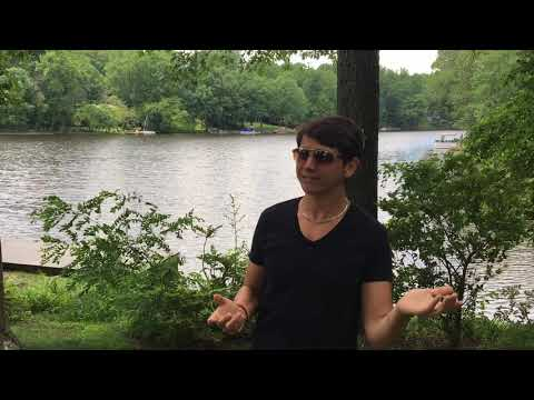 How Does Lake Barcroft Stay So Clean? Episode 42 of the Lake Barcroft Show.