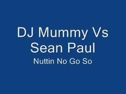 Dj Mummy Vs Sean Paul - Nuttin No Go So (Remix)