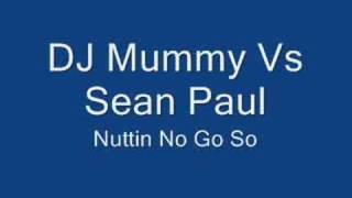 Dj Mummy Vs Sean Paul - Nuttin No Go So (Remix)