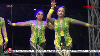 Download LIVE STREAMING LUDRUK BUDHI WIJAYA | SEDEKAH BUMI DSN. BANGGLE - TENGGOR - BALONG PANGGANG 2020