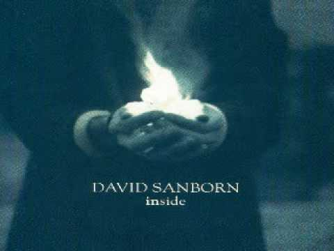 David Sanborn - Brother Ray