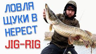 ЩУКА ПРОВЕЛА КРАШ-ТЕСТ СНАСТИ! Рыбалка на спиннинг 2020. Ловля щуки на спиннинг весной