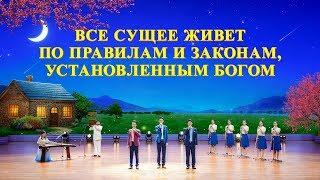 Христианские песни 2019 «Все сущее живет по правилам и законам, установленным Богом»